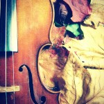my violin & leaves