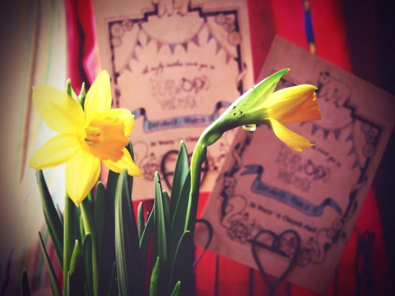 spring flyers & daffs