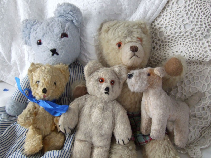 bears & animals from my collection
